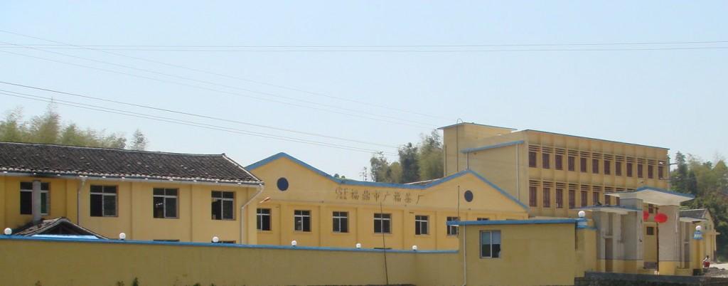 fujian province guang fu tea