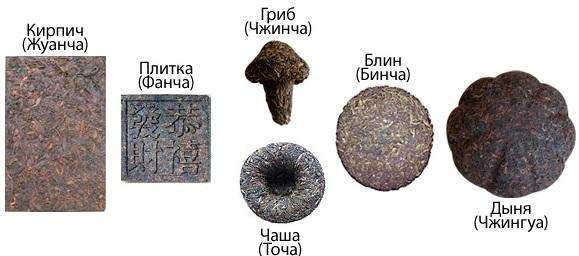 vidy-puerov